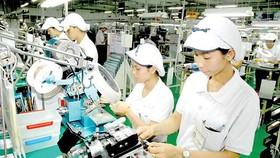 Kim ngạch khối doanh nghiệp trong nước đứng cao nhất