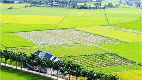 Xây dựng nông thôn mới với khí thế mới
