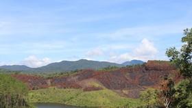 Để cháy hơn 11ha rừng thông, 3 nhân viên bảo vệ rừng bị khiển trách