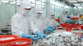 Giá trị tôm khô xuất khẩu sang Hàn Quốc tăng 194%