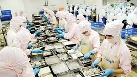Nông, thủy hải sản Việt Nam rộng đường xuất khẩu