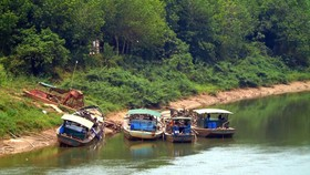 Đồng Nai: Khai thác cát lậu gây sạt lở 27.000m² đất Vườn quốc gia Cát Tiên