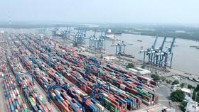 Nhiều phản hồi tích cực từ Đề án thu phí dịch vụ cảng biển