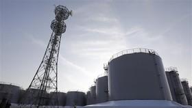 Các thùng chứa nước thải đã qua xử lý tại Nhà máy Điện hạt nhân Fukushima số 1 vào thời điểm tháng 10-2019. Ảnh: TTXVN
