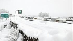 Tuyết phủ trắng trên một tuyến đường ở Madrid, Tây Ban Nha, ngày 13-1-2021. Ảnh: THX/TTXVN