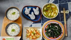 Bộ Y tế triển khai phần mềm Xây dựng thực đơn dinh dưỡng cho mẹ và bé tại Hà Tĩnh