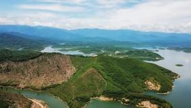 Phát hiện nhiều loài mới tại Vườn Quốc gia Vũ Quang