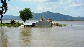 Ứng phó đợt mưa lũ, áp thấp nhiệt đới dị thường