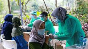 Chuẩn bị đối phó tốt hơn những biến chủng SARS-CoV-2