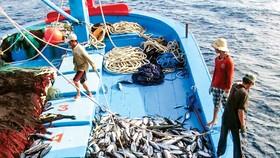 Gỡ thẻ vàng phải minh bạch nghề cá