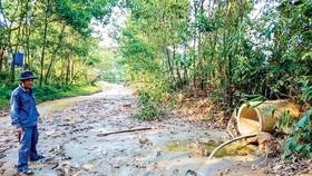 """""""Bãi lầy"""" hậu khai thác khoáng sản ở Quảng Nam"""