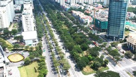 Nhiều vướng mắc trong quản lý cây xanh đô thị