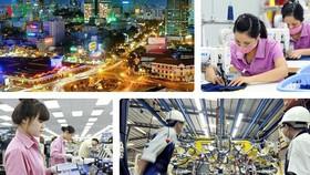 Kinh tế Việt Nam hé lộ nhiều gam màu sáng
