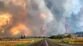 Australia: Hàng ngàn người bị mắc kẹt do cháy rừng
