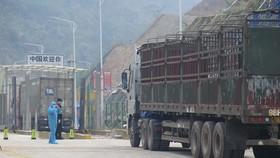 Cửa khẩu Tân Thanh-Pò Chài chính thức thông quan hàng hóa