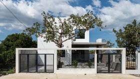 Ngôi nhà đơn giản, tiết kiệm chi phí xây dựng