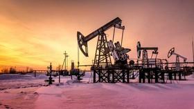 Nga, Mỹ giảm mạnh khai thác dầu thô
