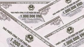 Đầu tư TPDN: Rủi ro cho NĐT cá nhân