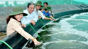 TPHCM thúc đẩy kết nối, tiêu thụ  sản phẩm chủ lực ngành nông nghiệp