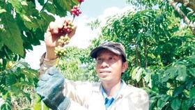 EVFTA có hiệu lực, nhiều cơ hội cho nông nghiệp