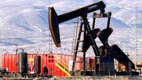 """Giá dầu cũng bị  """"nhiễm Covid-19"""""""