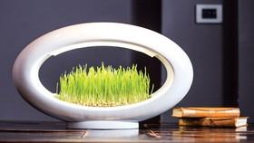 Không gian sống xanh cùng công nghệ