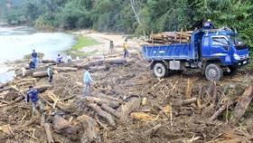 Quảng Ngãi: hàng chục khối gỗ theo lũ đổ về, người dân đổ xô đi vớt