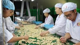 Hàng xuất khẩu Việt Nam chiếm 2% thị phần châu Âu