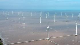 Điện gió tại tỉnh Bạc Liêu. Ảnh: CAO THĂNG