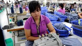 Nhiều mặt hàng của Việt Nam được hưởng lợi từ EVFTA