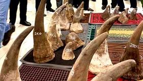 Phát hiện gần 100kg nghi sừng tê giác ở kho hàng khu vực sân bay Tân Sơn Nhất