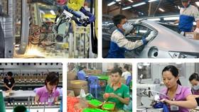 Đổi mới mô hình tăng trưởng để tăng sức chống chịu của nền kinh tế