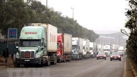 Hàng ngàn xe container bị mắc kẹt ở cửa khẩu Kim Thành-Lào Cai