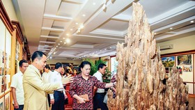 Tại Bảo tàng Trầm Hương, anh Nguyễn Văn Tưởng giới thiệu với Chủ tịch Quốc hội Nguyễn Thị Kim Ngân về chiến lược phát triển Trầm hương Khánh Hòa.