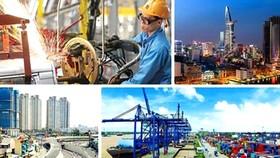 Thành lập các hội đồng phát triển các ngành kinh tế