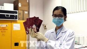 Nhiều sản phẩm chất lượng từ Trung tâm Nghiên cứu triển khai SHTP
