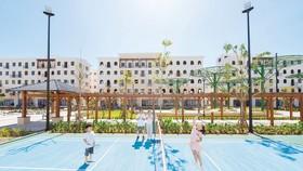 Dự án bất động sản du lịch ở An Thới, TP Phú Quốc, Kiên Giang sôi động Ảnh: HUỲNH LỢI