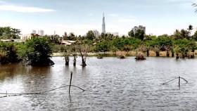 """Sống khổ tại dự án """"treo"""" gần 30 năm ở bán đảo Bình Quới - Thanh Đa, TPHCM"""