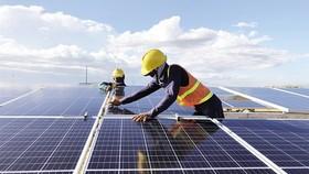 Điện mặt trời nguy cơ bị cắt giảm sau khi phát triển ồ ạt. (Ảnh minh họa: KT)
