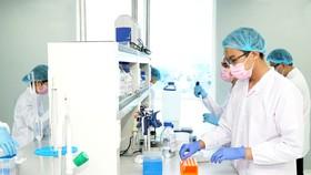 Công ty CP Công nghệ sinh học Dược Nanogen tiên phong bắt tay vào dự án sản xuất vaccine Covid-19. Ảnh: HOÀNG HÙNG
