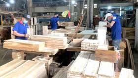 Công ty cổ phần Chế biến gỗ Thuận An (Bình Dương) chuyên sản xuất gỗ cao su
