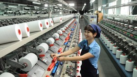 TPHCM xây dựng những tập đoàn kinh tế mạnh, đủ sức cạnh tranh