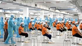 Lực lượng cán bộ y tế tham gia lấy mẫu xét nghiệm Covid-19 cho công nhân.