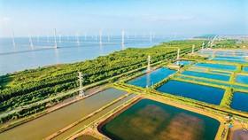 Điện gió rất được các tỉnh ven biển ĐBSCL kỳ vọng góp phần phát triển kinh tế.
