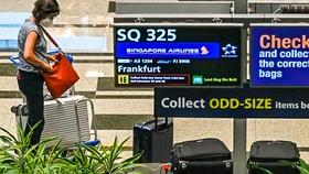 Một hành khách trên chuyến bay SQ325 của Singapore Airlines -  chuyến bay đầu tiên đến Singapore theo VTL trong sảnh hành lý tại sân bay Changi ngày 8-9-2021.