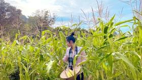 Hành trình nông sản Việt của hai cô gái trẻ