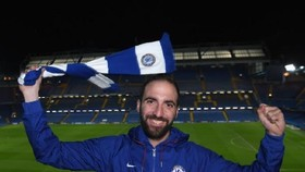 Gonzalo Higuain trong màu áo Chelsea.