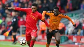 Nhận định Liverpool – Wolves: Triệt hạ Bầy Sói (Mới cập nhật)