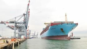 Tàu siêu trọng vào nhận hàng tại khu cảng Cái Mép - Thị Vải