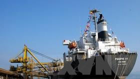 Tàu PACIFIC vào ăn than tại cảng Cẩm Phả, Quảng Ninh. (Ảnh: Văn Đức/TTXVN)